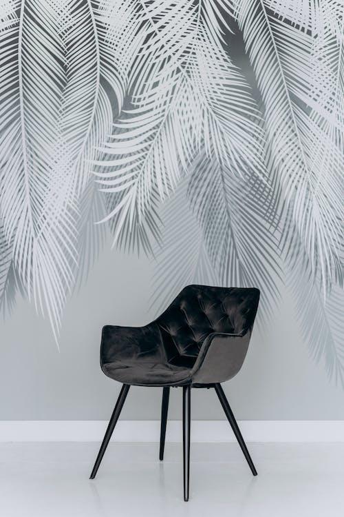 Black Chair Beside Green Palm Plant