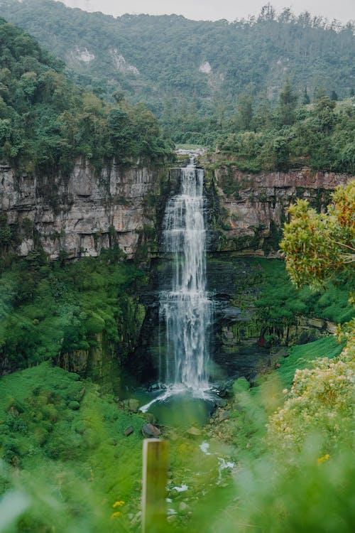 Ảnh lưu trữ miễn phí về bắn dọc, chụp ảnh thiên nhiên, colombia