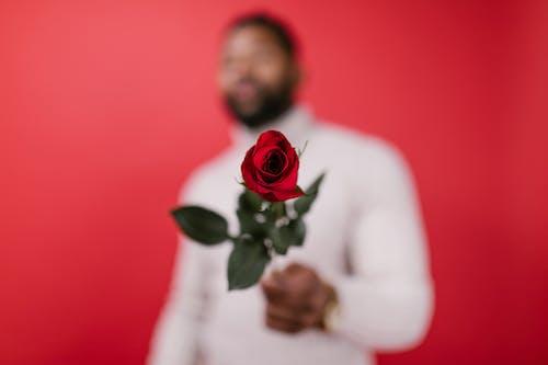 Fotos de stock gratuitas de amor presente, día de San Valentín, efecto desenfocado