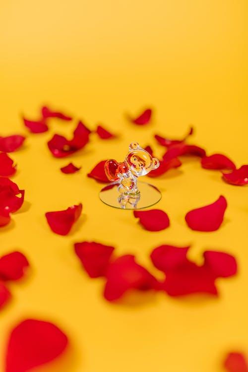 Fotos de stock gratuitas de amor presente, día de San Valentín, enamorado