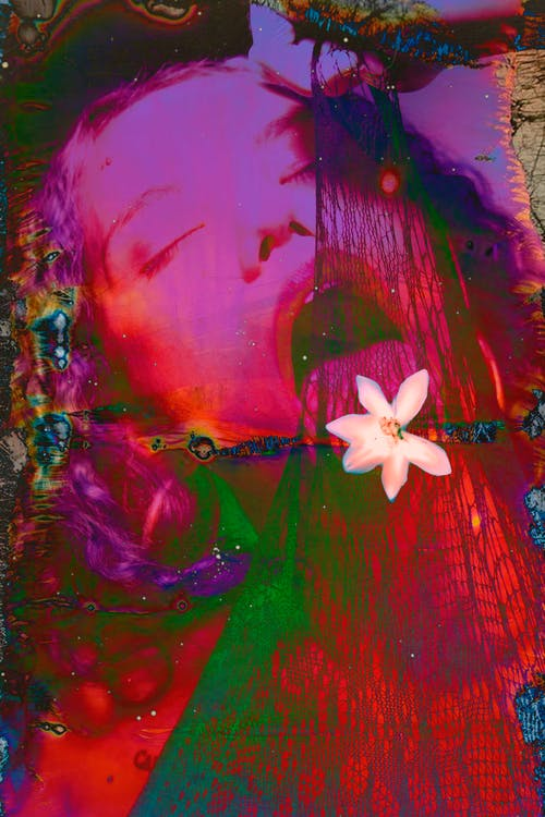 Sensual abstract female with multicoloured hair opened mouth and closed eyes holding and licking net decorated with white flower