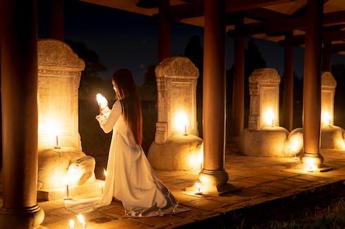 Fotos de stock gratuitas de adorar, afuera, aire libre