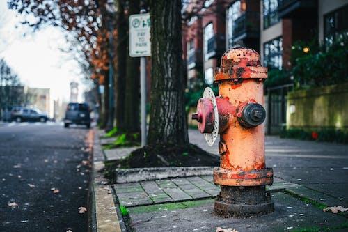 간, 거리, 건물의 무료 스톡 사진