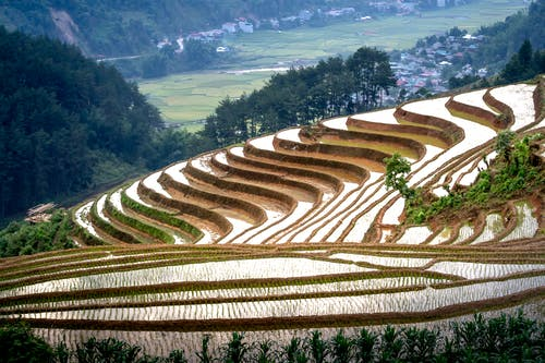 Spectacular scenery of rice paddy terraces ans small settlement located on mountain slope in Vietnam