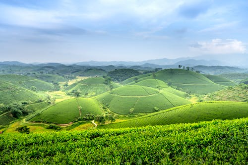 Green fields and hills under blue sky