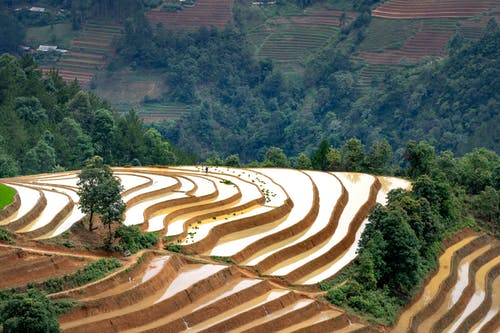 Kostenloses Stock Foto zu abhang, ackerland, agronomie