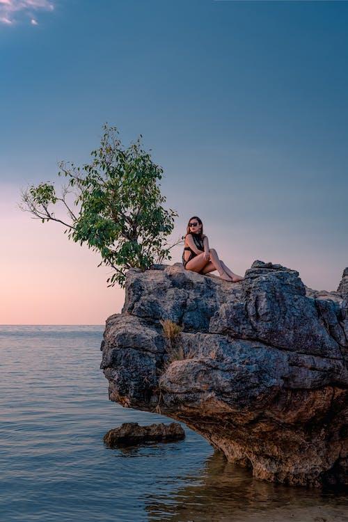 Photos gratuites de arbre, aube, bord de mer