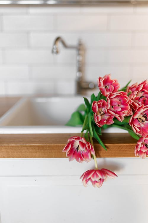 Red Flowers on White Ceramic Sink