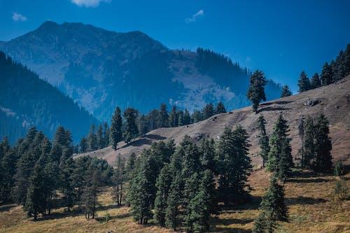 Gratis stockfoto met aangenaam, achtergrond, bergen, bergen bergen
