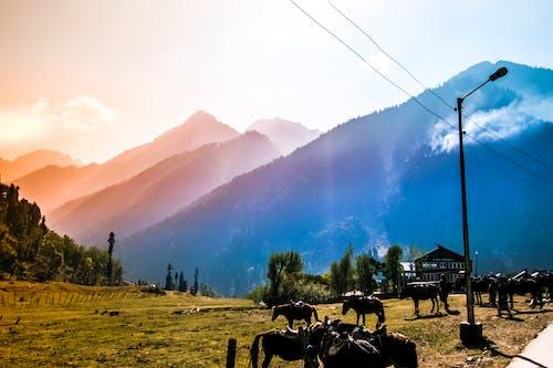 Základová fotografie zdarma na téma aura údolí, barevné hory, barevné nebe
