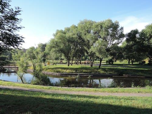 Ilmainen kuvapankkikuva tunnisteilla kaupungin puisto, kaupungin vihreä alue, kesä, pieni joki