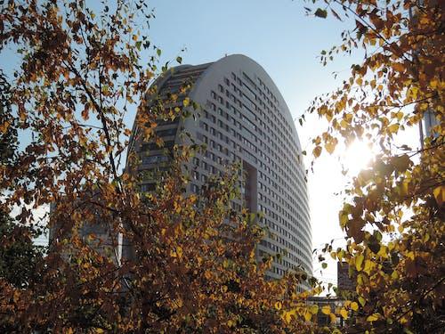 Ilmainen kuvapankkikuva tunnisteilla kaupunki, moderni arkkitehtuuri, pyöreä rakennus, rakennus