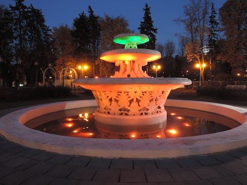 Ilmainen kuvapankkikuva tunnisteilla ilta, iltapuisto, iltavalaistus, moskovan puisto