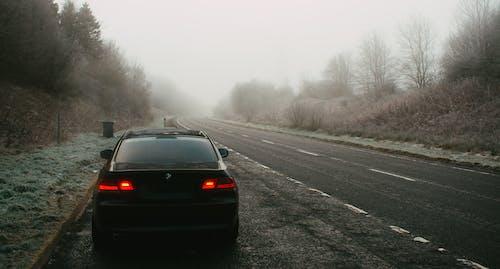 Photos gratuites de arrière-plan, BMW, brouillard