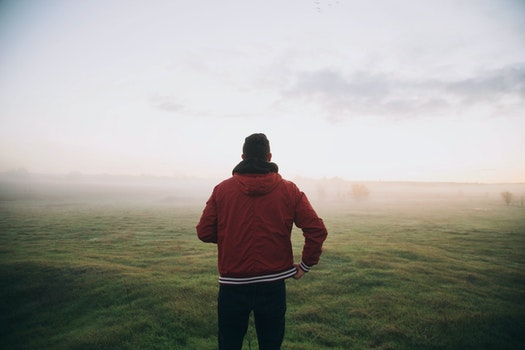 Free stock photo of nature, man, person, fog