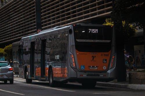 Fotos de stock gratuitas de autobús, Brasil, bus