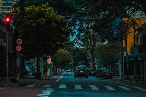 Fotos de stock gratuitas de Brasil, calle, ciudad