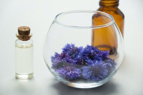 Kostenloses Stock Foto zu синие цветы, уход за телом, цветы, василек