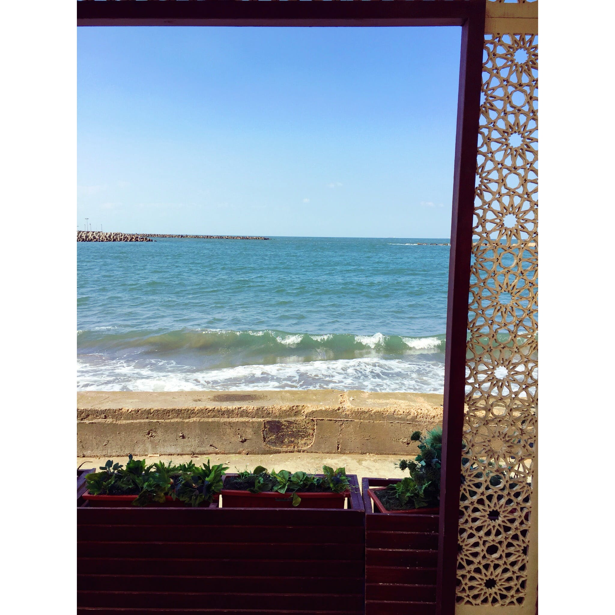 Free stock photo of sea, blue, café, morning