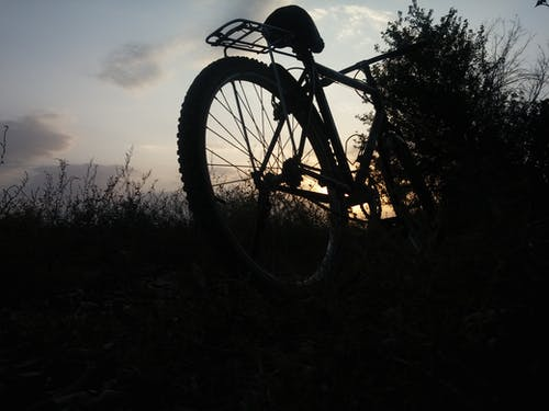 Free stock photo of farm, sunset, tree