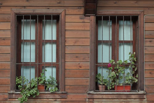 Red Flowers on Brown Wooden Window