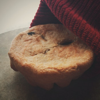 Free stock photo of cookie