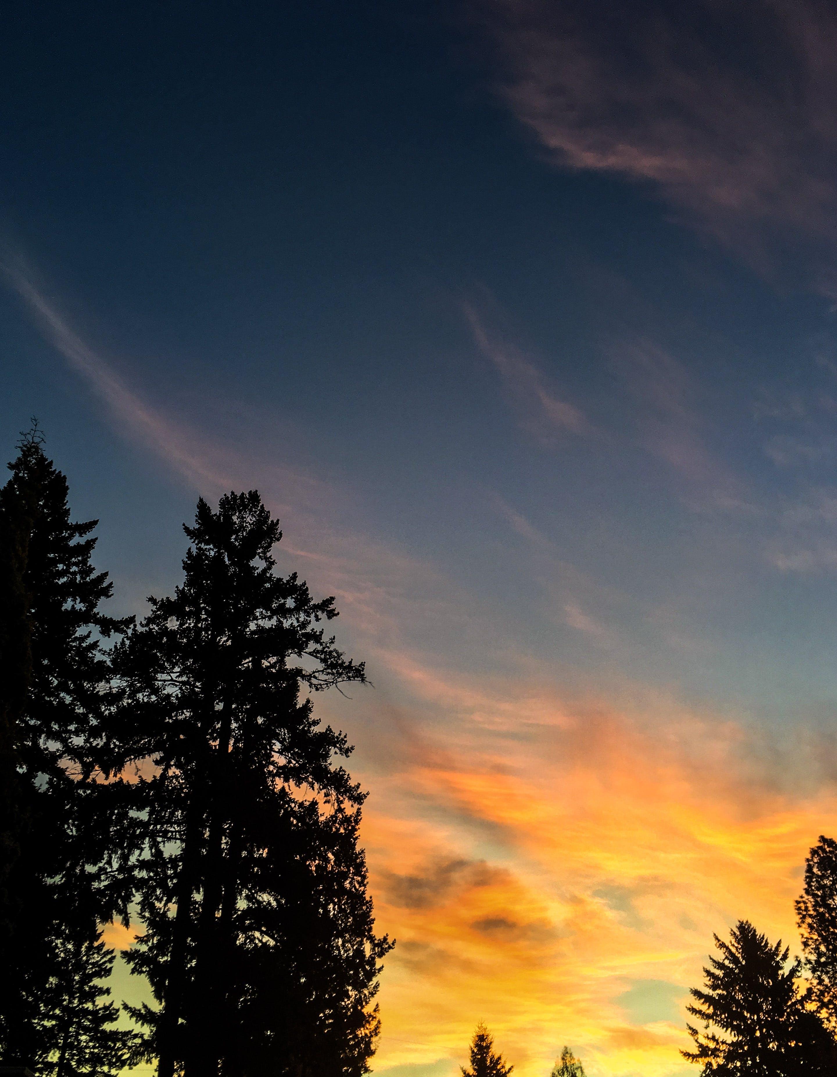 Free stock photo of colors, oregon, sunrise, sunset
