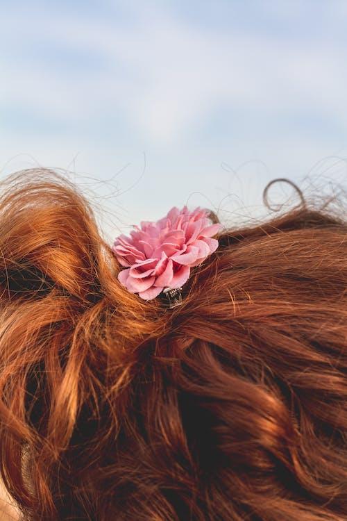 Безкоштовне стокове фото на тему «волосина, вродлива, Дівчина, жінка»