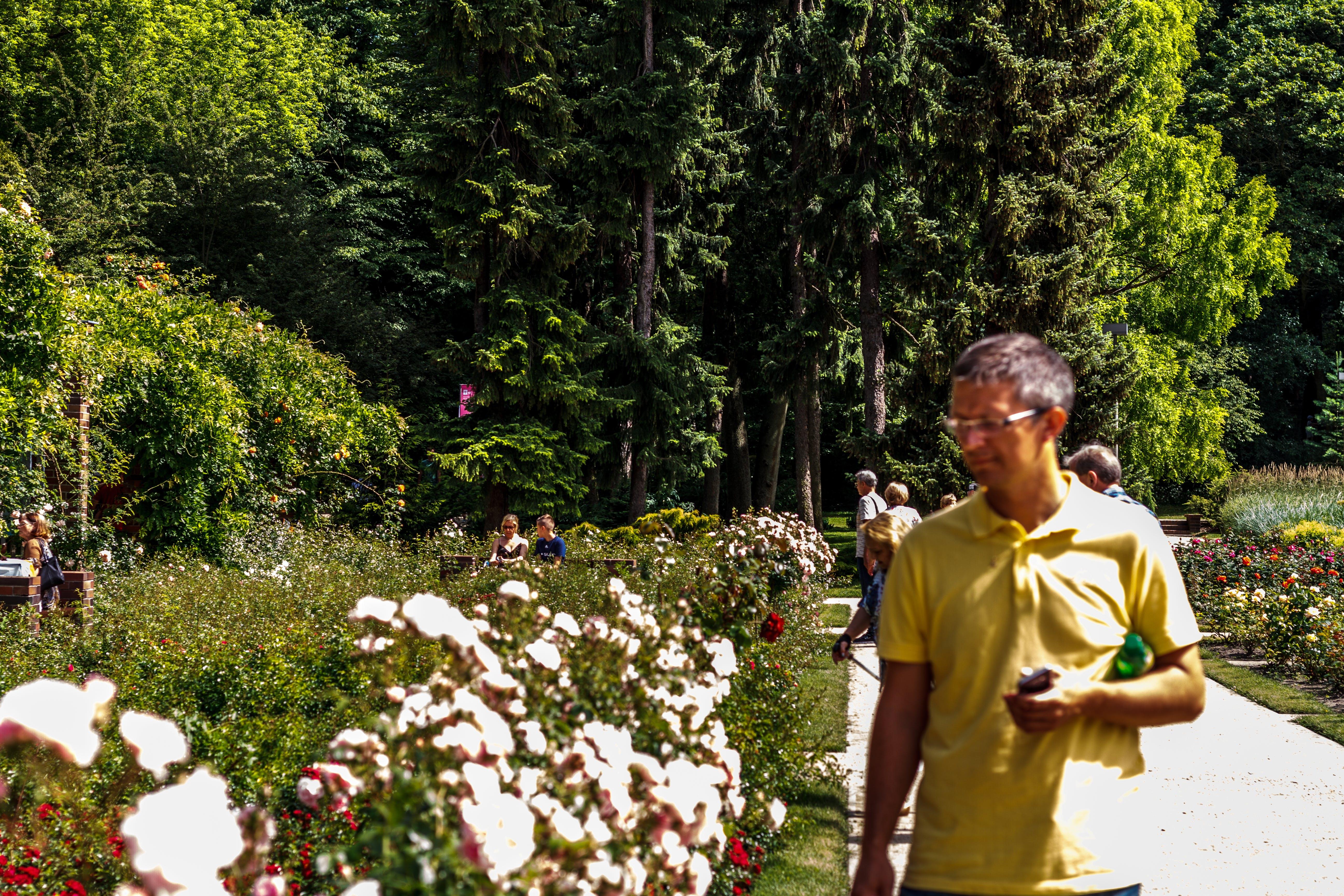 Free stock photo of garden, man, ogrod, people