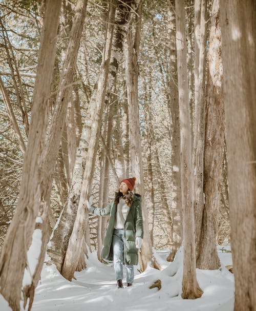 Full length of young ethnic female traveler in stylish warm outfit and hat exploring nature while standing in snowy forest amidst tall trees on sunny winter day