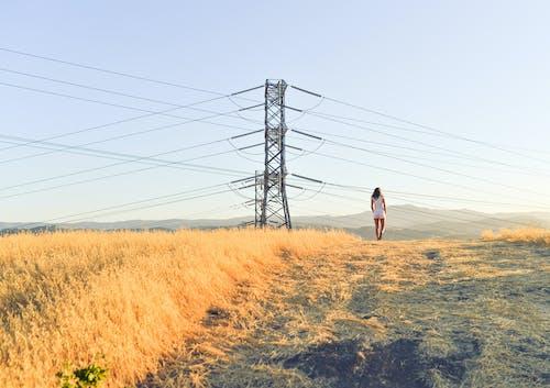 Безкоштовне стокове фото на тему «електролінії, жінка, модель, поле»