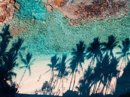 Top view of turquoise sea with rocky formations washing coast with shadows of tall palms in tropical resort on sunny weather