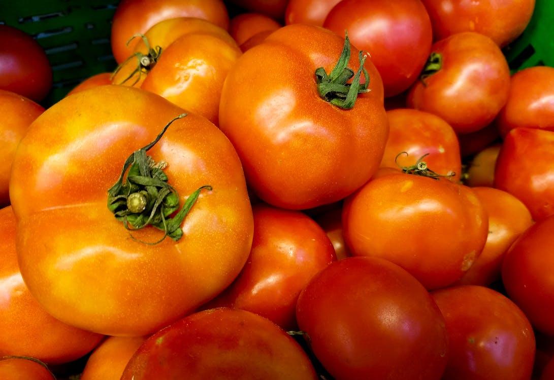 activități agricole, agricultură, crește