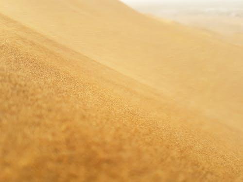 Dry sand dune in desert terrain