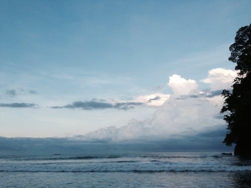 コスタリカ, パシフィック, ビーチ, 岸の無料の写真素材
