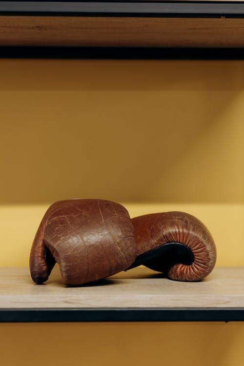 Gratis lagerfoto af aktivitet, boksehandsker, boksning