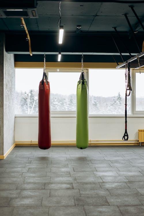 Gratis lagerfoto af aktie, aktivitet, boksning