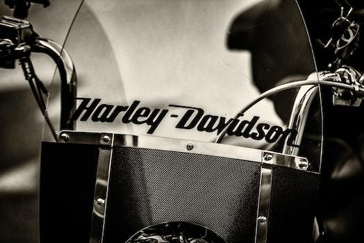 Graysacle Photography of Black Harley-davidson Motorcycle