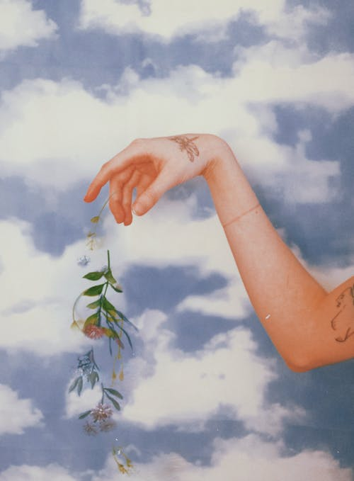 Person Holding Green Leaves Under White Clouds