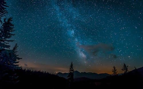 Starrk Sky during Nighttime