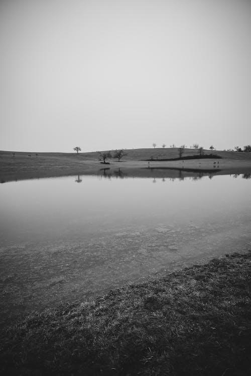 Fotos de stock gratuitas de blanco y negro, cuerpo de agua, lago
