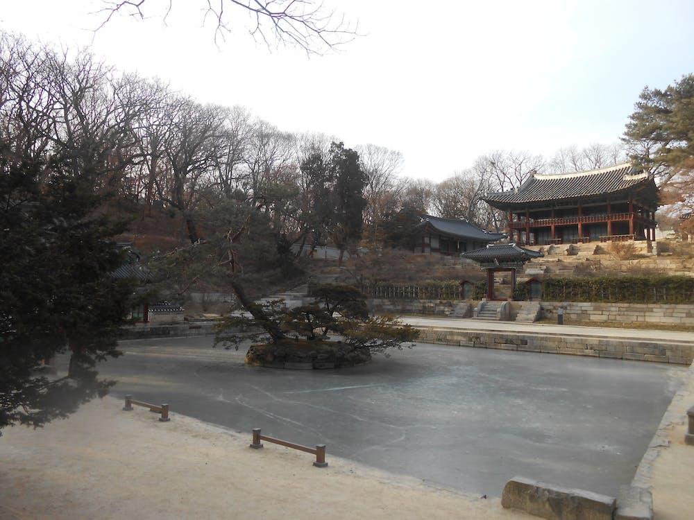 Free stock photo of changdeokgung palace, frozen pool, huwon