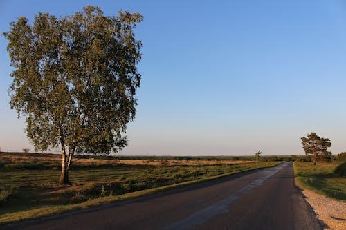 Darmowe zdjęcie z galerii z cień, dorset, horyzont, kolor
