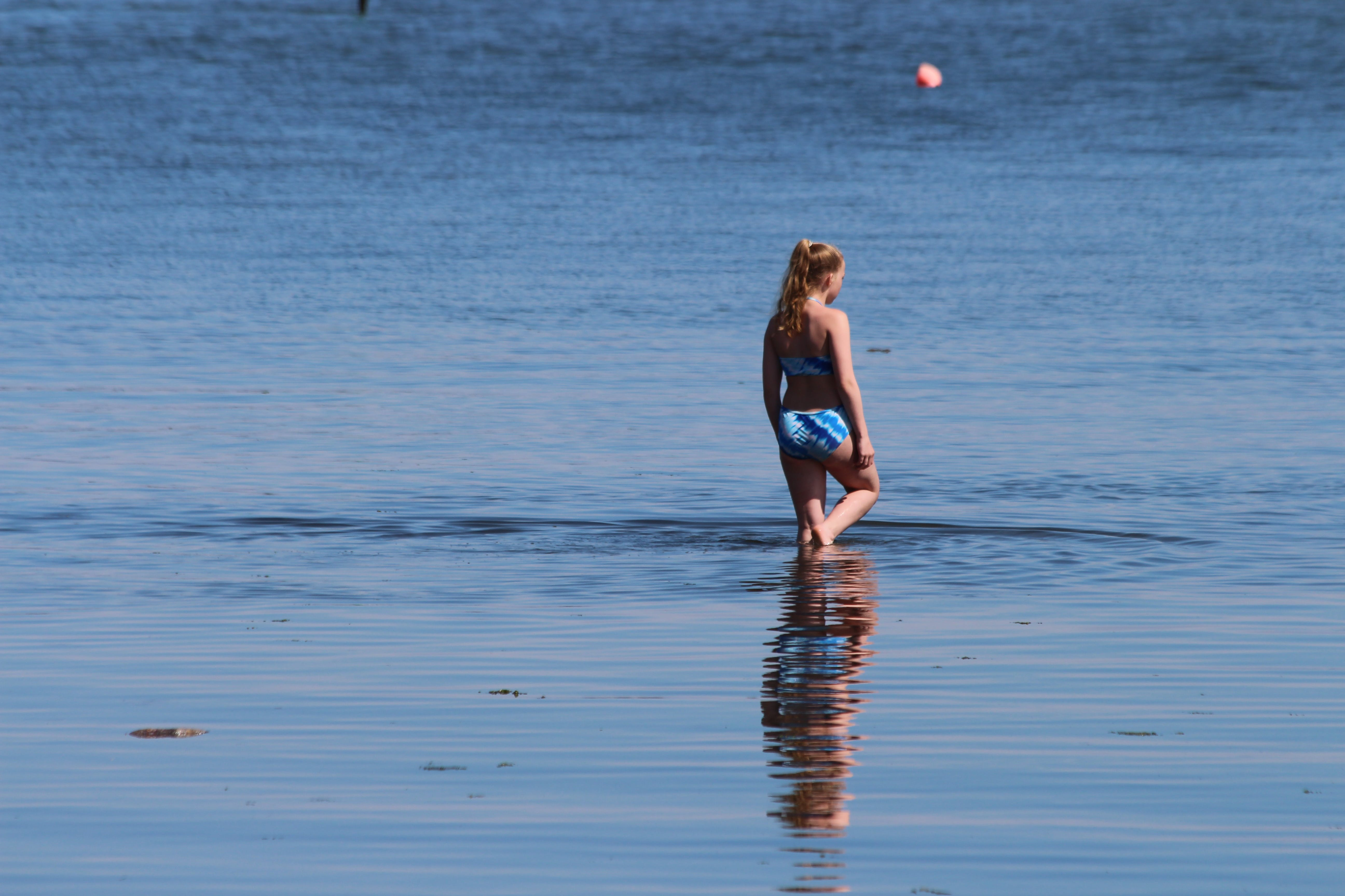 Free stock photo of sea, blue, girl, reflection