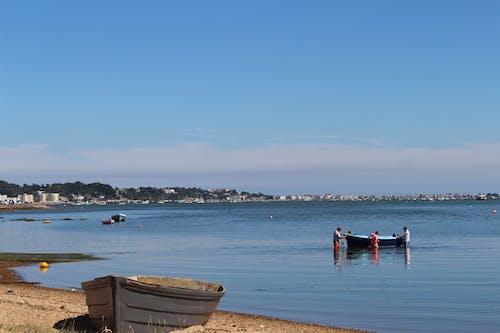 佳能, 划船, 划艇, 在海邊 的 免费素材照片
