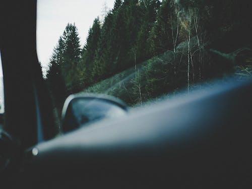 Gratis stockfoto met auto, automobiel, beweging, bomen