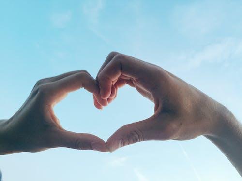 คลังภาพถ่ายฟรี ของ มือ, รูปหัวใจ, สัญลักษณ์ความรัก