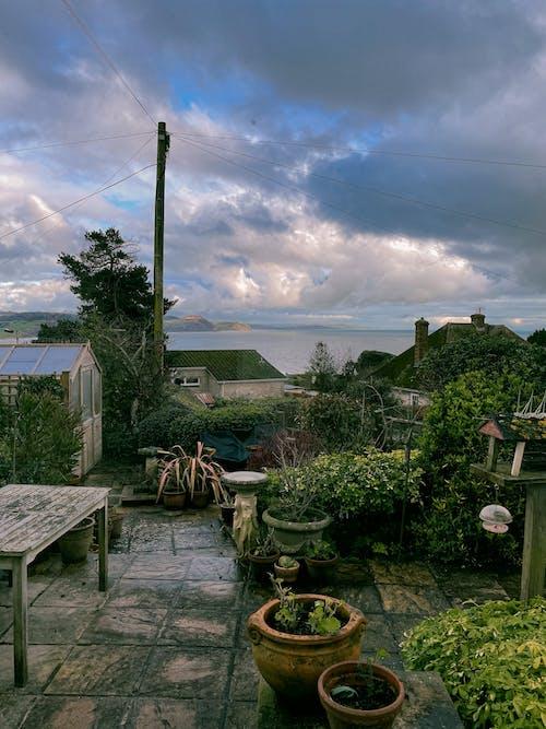 Gratis stockfoto met achtererf, achtertuin, bewolkt