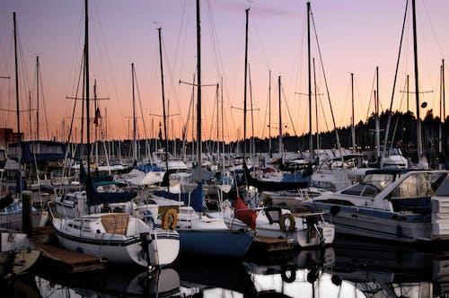 Gratis arkivbilde med båter, båthavn, daggry, forankret