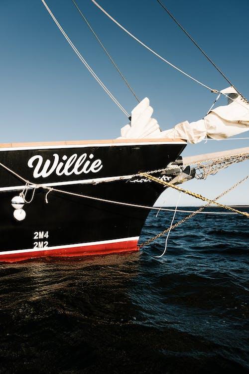 Free stock photo of boat, harbor, mast